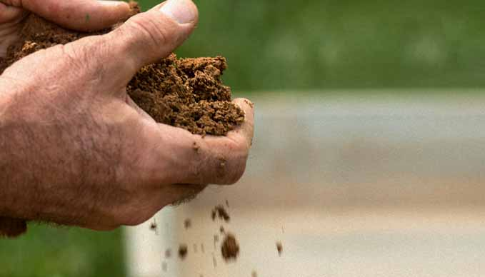 Fulvic Acids Are NOT Created Equally | Part 3: Natural Soil Enhancers