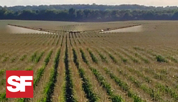 SUCCESSFUL FARMING: FARMERS ARE SPRAYING FUNGICIDE, LOOKING TOWARD HARVEST