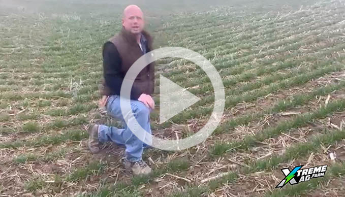 Field Report: Here's How Kelly Garrett Increased His Winter Wheat Yield