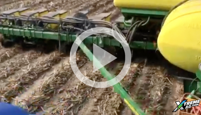 Corn Population Trials