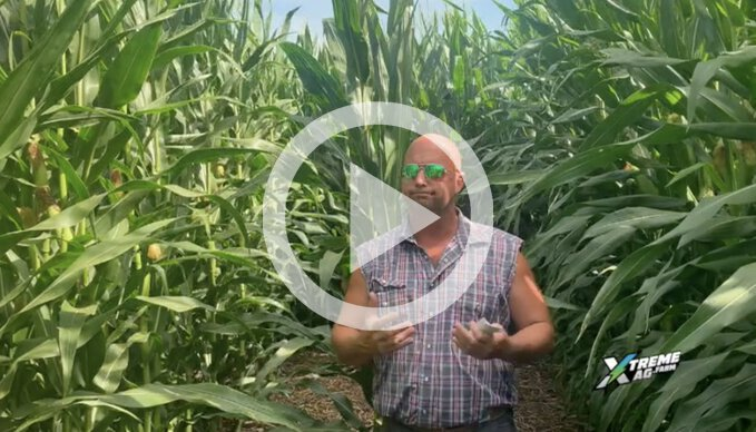 Reverse Engineering Corn Yield with Variable Populations