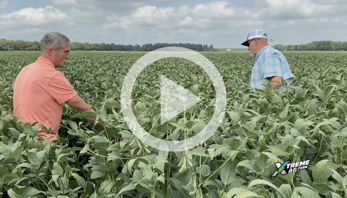 Matt Miles Breaks Down TEVA's Unique Soil Amendments and Biologicals that He Uses
