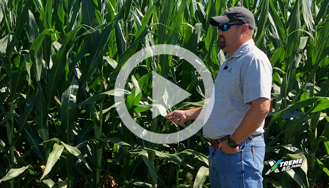 New AgroLiquid Trial Products For Corn