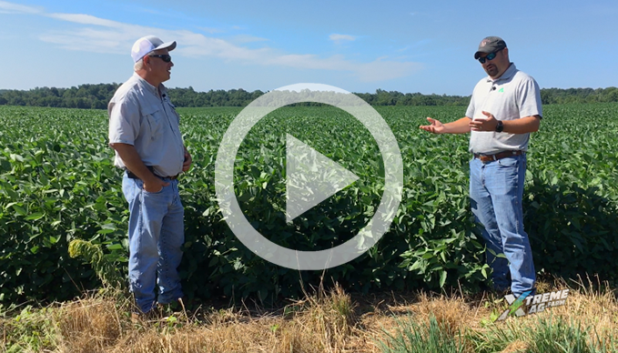Talking Beans with Kevin and Agroliquid's Agronomist