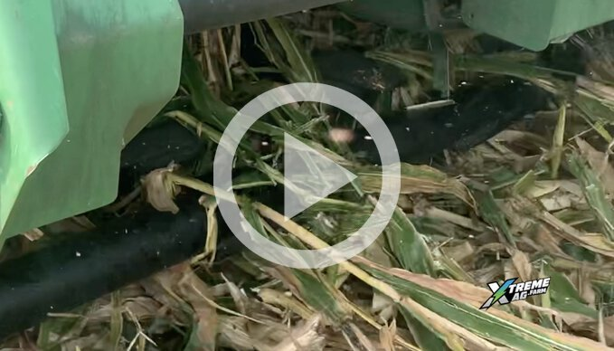 Can You Improve Bean Emergence With Your Combine Head?