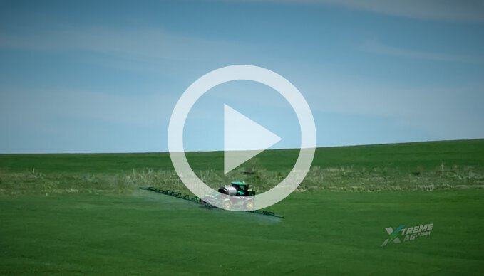 Keeping Sulfur levels up and plant height down