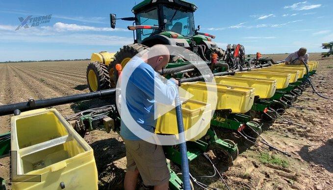 BASF Cotton Seed Trials