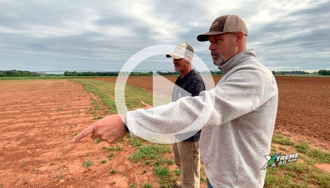 Two NCGA Winners Walk Into A Corn Field...
