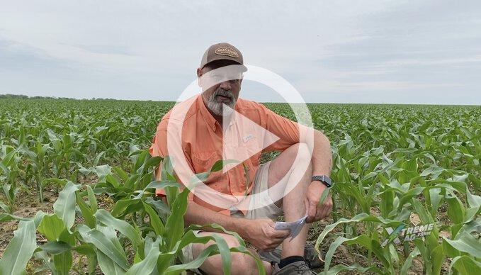 Matt talks Emergence and FMC's Xyway In-Furrow Fungicide