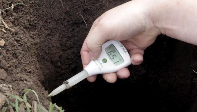 Soil pH at Varying Depths