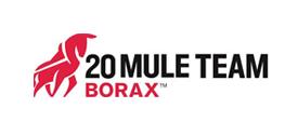 U.S. Borax