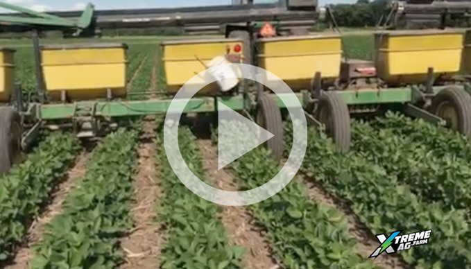 Recipe for Dry-Banding R1-R2 Soybeans