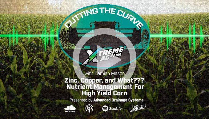 Zinc, Copper, and What??? — Nutrient Management For High Yield Corn