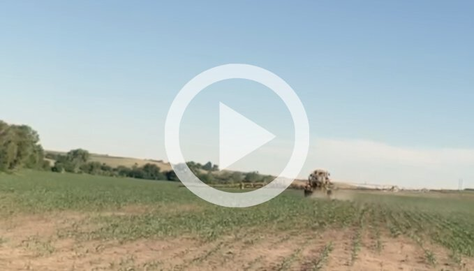 Pushing The Crop With A Foliar